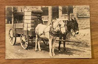 Scarce 1914 Eddy RPPC Postcard Black Americana Southern Pines, NC Sandhill !