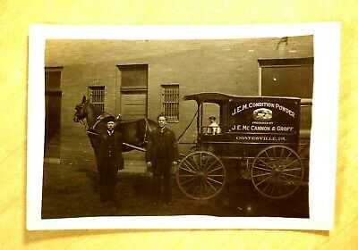 McCannon & Groff Dog in Delivery Wagon Horse Coatesville PA Photo Postcard c1907