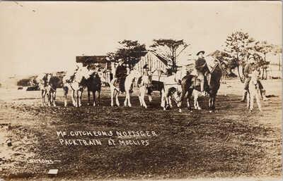Moclips WA McCutcheon & Noftsger Packtrain Cowboys Simons RPPC Postcard F83