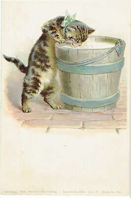 G H THOMPSON ? ARTIST OLD POSTCARD CAT DRINKING MILK OUT OF WOODEN PAIL THEO