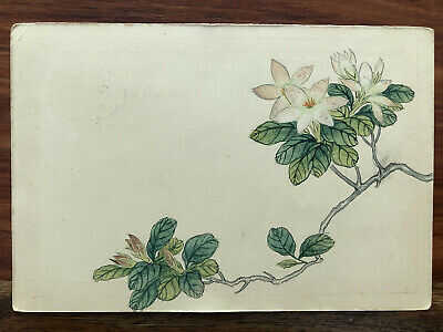 CHINA OLD POSTCARD HAND PAINTED CHINESE PAINTING FLOWERS !!