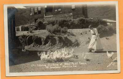 West Point Tavern Mount Tamalpais Marin County Cal 1908 Real Photo Postcard