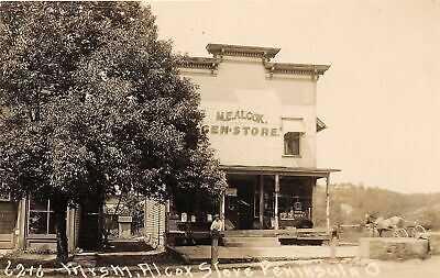 H70/ Peninsula Ohio RPPC Postcard c1910 Alcox General Store Leiter 213