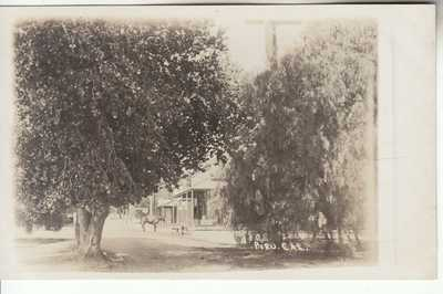 RPPC Piru CA Ventura CO near Fillmore Santa Paula Santa Clarita 1907 era Photo