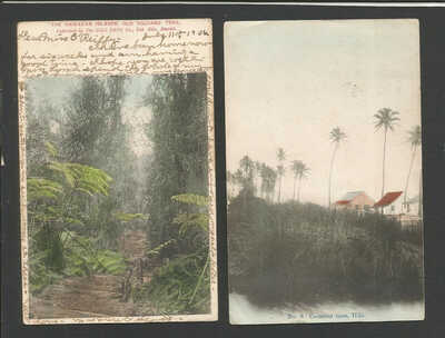 Hilo Hawaii 2 Different Vintage 1906 Color Local Island Scenes>Posted