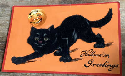 Rare Felt Black Cat Vintage Halloween Postcard Germany Hallowe'en Greeting