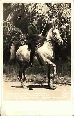 Pomona CA Arabian Mare Horse Zehowa Kellogg Frasher's Real Photo Postcard