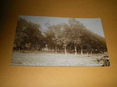 1906 RPPC View Tolono Park Tolono IL Champaign Co. Illinois Photo Postcard