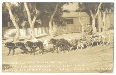 RPPC - DOG TEAM World TRIP TRAVELER New Foundland to LA CA at SANTA MARIA ca1908