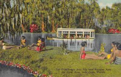 Ocala Florida Paradise Park Glass Bottom Boat Black Americana Postcard AA4770