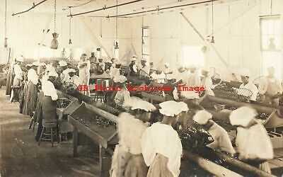 Black Americana, RPPC, Workers at the McMenamin Plant in Hampton VA,Cheyne Photo
