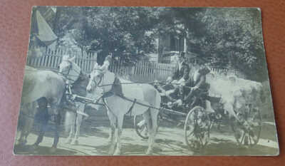 Vintage RPPC Postcard, White Horses and Carriage Oakland Ca. Ladies Driver