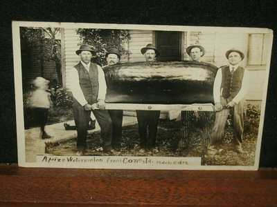 Antique 1912 Prize Very Large Watermelon Cone Iowa IA Real Photo Postcard