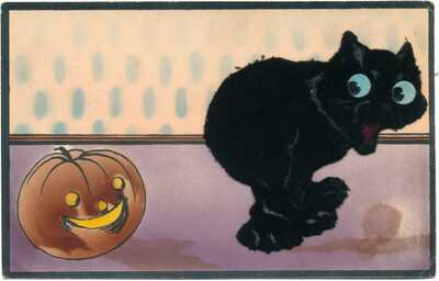 O My!   Halloween - Black Cat w/ Cloth Overlay, Pumpkin! Rare!