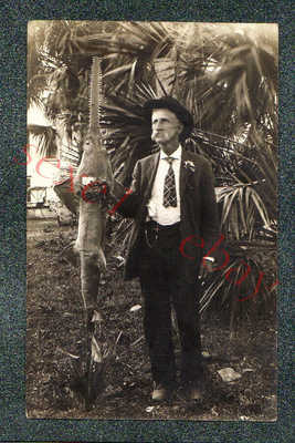 PALM BEACH FLORIDA FISHERMAN w SCARY SAWFISH  - circa 1920 rppc Photo GRADE 5