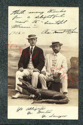 MIAMI FLORIDA STUFFED ALLIGATOR STUDIO PROP - circa 1906 rppc Photo GRADE 5