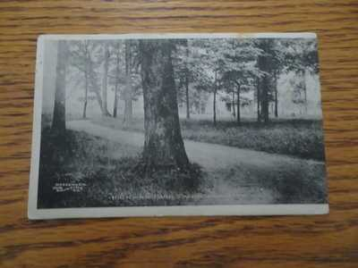 HICKMAN PARK 1910 Owensboro Kentucky Postcard