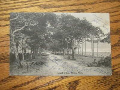 Vintage Coast Drive Postcard Biloxi MS 1908