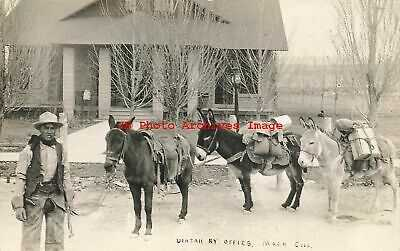 CO, Mack, Colorado, RPPC, Uintah Railway Offices, Cowboy with Horse & Burros