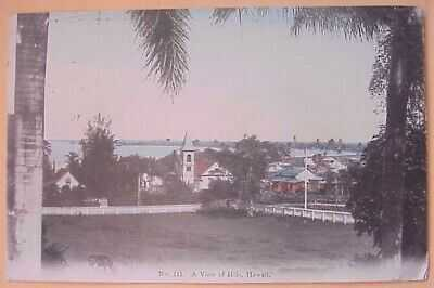 1908 A View of Hilo TH Hawaii Hilo Drug Co. #111 Hand Tinted in Japan